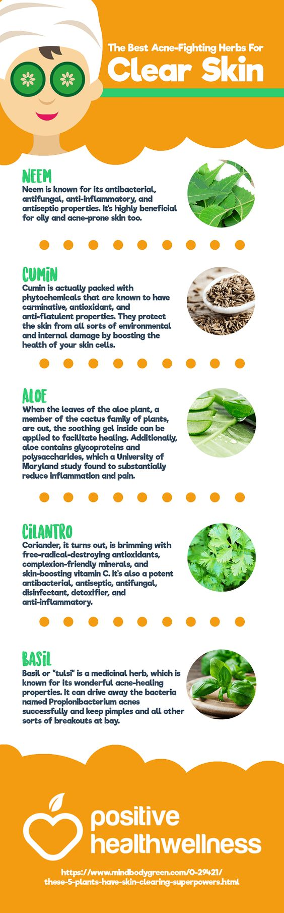 The Best Acne-Fighting Herbs For Clear Skin – Positive Health Wellness Infographic