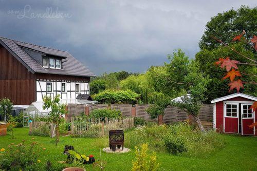 Unser Gartenguckloch Im Juni 2020 Vom Landleben In 2020 Huhnergarten Huhner Im Garten Schwarzaugige Susanne
