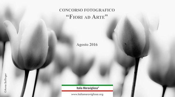 """Concorso Fotografico """"Fiori ad Arte"""" 2016"""