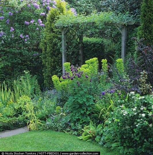 gardens backyards and spring on pinterest