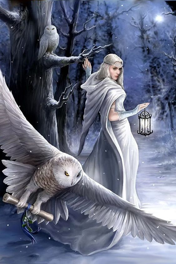 Midnight Messenger Aracnafaria by Anne Stokes