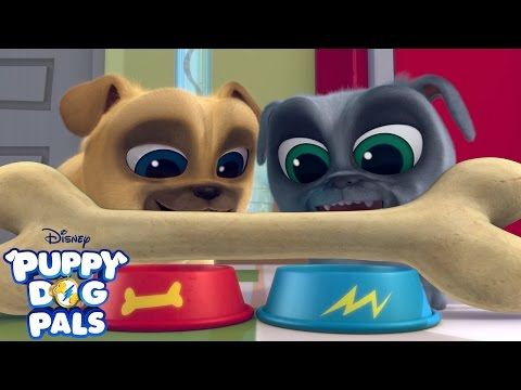Theme Song Puppy Dog Pals Disney Junior Youtube Puppy Coloring Pages Dogs And Puppies Puppies