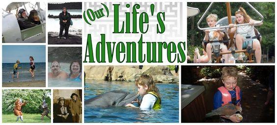 Life's Adventures - Homeschool blog