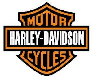 Harley Davidson Sticker #rocking