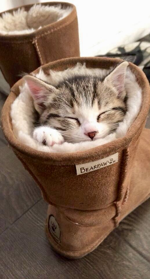 They must have bought this boot for me, Oh, sooooooo soft