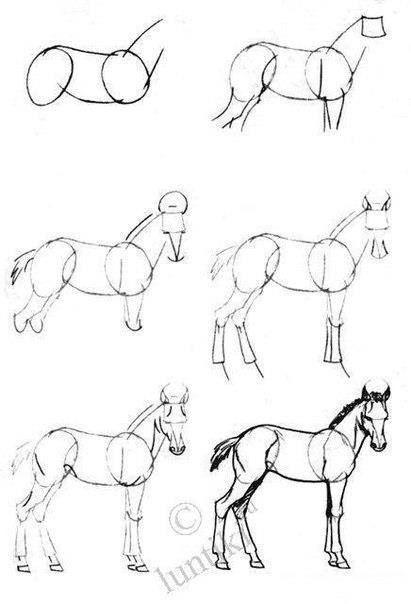 Dessiner un cheval techniques dessin pinterest - Dessiner un cheval simple ...