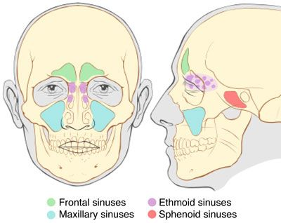 how to stop tooth pain from sinus infection