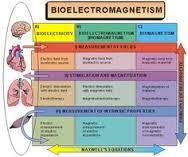 Image result for bioelectric-body and chi