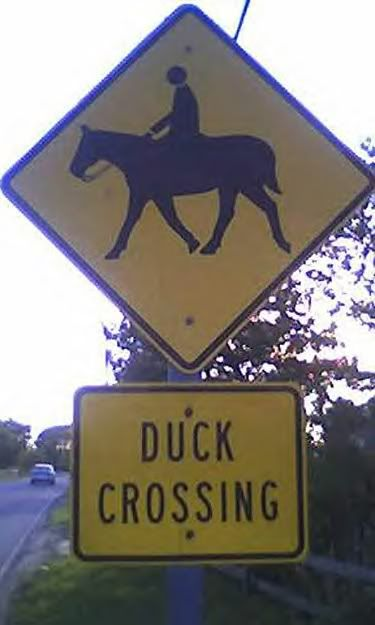 20 Challenging Unusual Road Signs ~ UNUSUAL THINGs