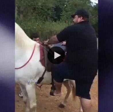 kkkk o cara caiu igual uma bola e o cavalo que não quis