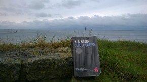 Seul le silence * RJ Elroy