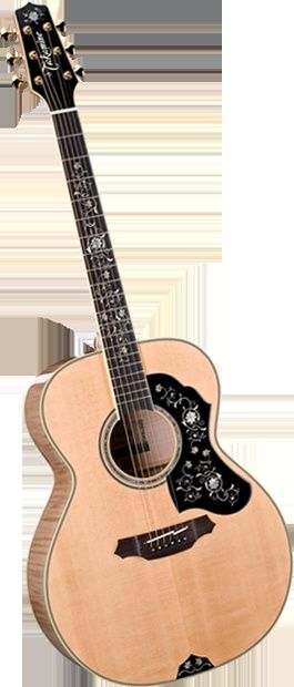 Takamine EF450DLX I love this guitar.