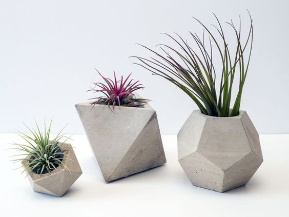 Concrete Geometric Set of 3 Planters / Plant Pots (plants included):