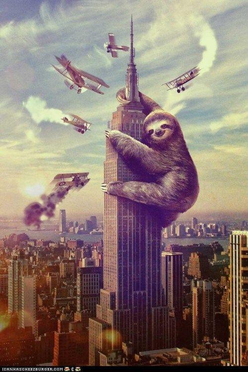 Sloth Kong!