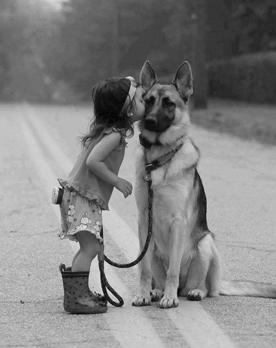 Girl kissing big doggy, cute