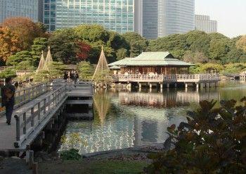 Hama Rikyu Gardens, Tokyo