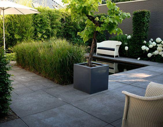 Kleine moderne tuin terrasse pinterest tuinen ontwerp en kleine tuin ontwerpen for Terasse ontwerp