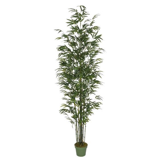 An idea for the outdoor gate entry area: line that walkway with tall fake plants in big pretty pots. Can add faerie lights for a little after dark bling. It would help alleviate the cave atmosphere of that walk. House of Silk Flowers Artificial Bamboo Tree in Pot & Reviews   Wayfair