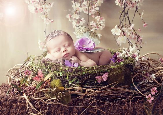 Baby sleeping in nest with butterflies*****YOU'LL LOVE OUR OTHER UNIQUE BOARDS, FOLLOW US AT www.pinterest.com/earthwormtec #children #garden: