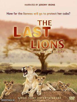 Xem Phim Những Con Sư Tử Cuối Cùng - The Last Lions