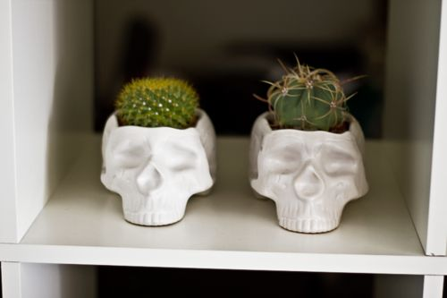 If anyone knows the original source to these please link me!  I love these skull plant pots so much.