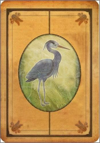 Amazon.fr - Messages de votre animal totem : Avec 44 cartes illustrées - Steven D. Farmer, Bee Sturgis, Christine Lefranc - Livres