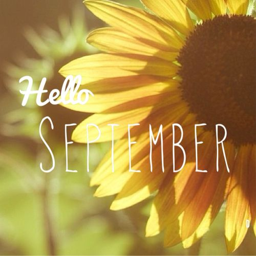 Join us in welcoming September and the start of cosy evenings, layering knits with scarves and the bright Autumn pallet!