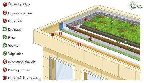 toiture vegetalisee piscine sur toit et toit terrasse pinterest. Black Bedroom Furniture Sets. Home Design Ideas