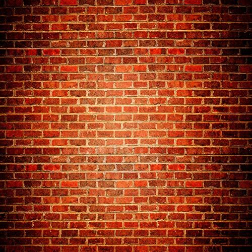 10x10 Ft Microfiber Red Brick Wall Photography Backdrop V Https