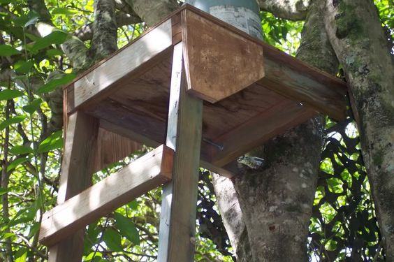 Tree Stand Designs Wood : Homemade treestand hunting pinterest image