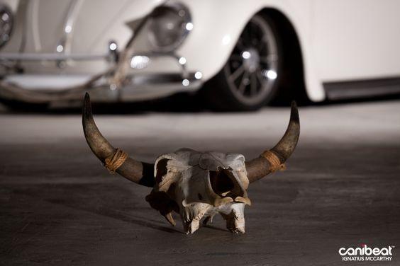 Skull Bug.