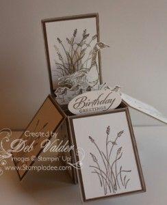 """By Deb Valder. Card in a Box featuring stamps from """"Wetlands"""" by Stampin' Up."""