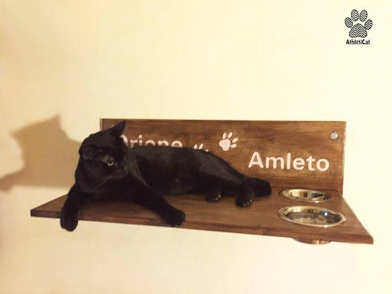 Orione se la gode sulla sua mensola artiginalale per gatti con ciotole e scritta crema intagliata