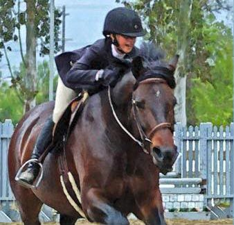 The best horses in Heaven they have no tail. This is a rule they all know without fail. For when a new horse arrives with a short cut bob, they all know that this horse did a very good job. His owner could not bear to part with her friend so she saved his tail, …