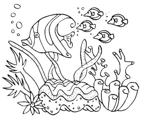 - Simple Coral Reefs Coloring Picture Coral Reef Drawing, Animal Coloring  Pages, Ocean Coloring Pages