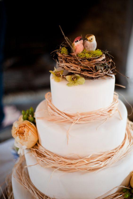 Photo by Open Light Studio (www.openlightstudio.com): Bird Cakes, Birds S Nest, Pretty Cake, Birdnest Cake, Beautiful Cake, Wedding Cake, Birds Cake