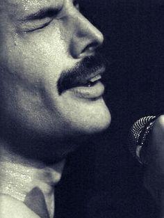 Bohemian Freddie