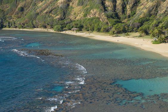 We snorkeled here in February. Love Oahu!