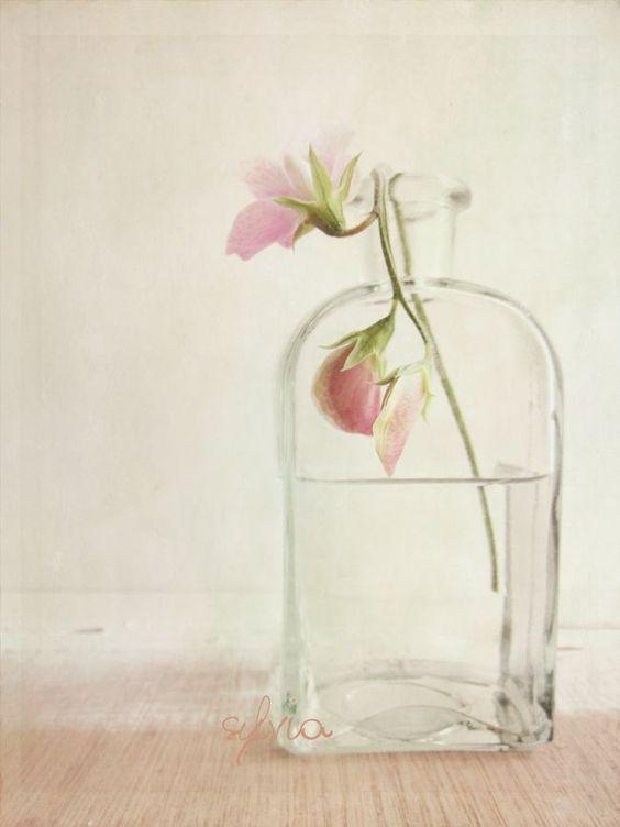 Simplicity ✿⊱╮by Kim Klassen
