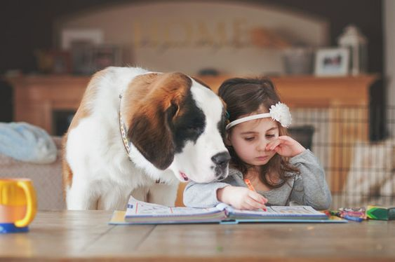 This dog who took time out of her busy schedule to teach this girl to read.