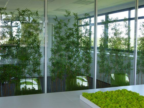 cloison amovible vegetale une cloison dcorative pour. Black Bedroom Furniture Sets. Home Design Ideas