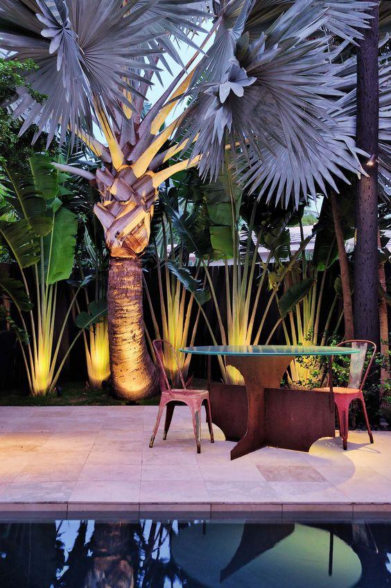 Se a palmeira azul já é linda de dia, imagina de noite
