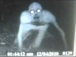 real ghost pictures - Google Search