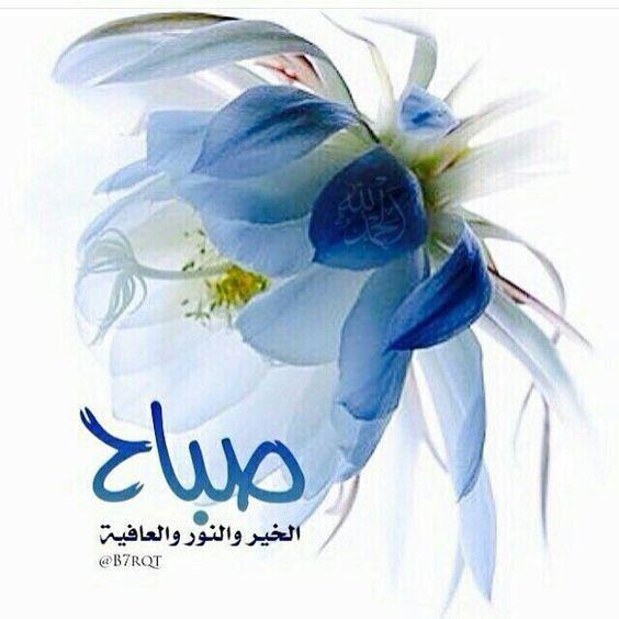 صباح الخير Good Morning Arabic Morning Images Good Morning