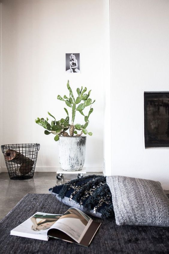 Sunday Sanctuary: My House For Elle Magazine | Oracle Fox | Bloglovin'