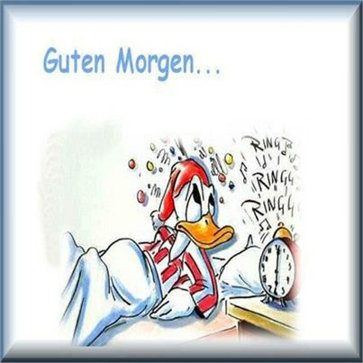 guten morgen zusammen und einen schönen tag - http://guten-morgen-bilder.de/bilder/guten-morgen-zusammen-und-einen-schoenen-tag-133/