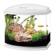 This is the one stop shop for all kinds of pet supplies and not limited to aquarium supplies online. If you are a pet lover who is always hunting for products that help you take care of the pets and pamper them in a fine way, going with the products sold at The Pet Supply Company is all that you need to do.