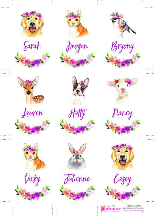 What Are Some Cute Animal Names
