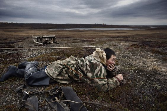 Yamal Peninsula Yamal peninsula consequences