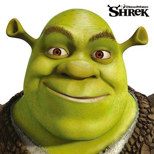 Shrek Face Graphic Art Print On Canvas Art Group Shrek Drawing Shrek Character Shrek